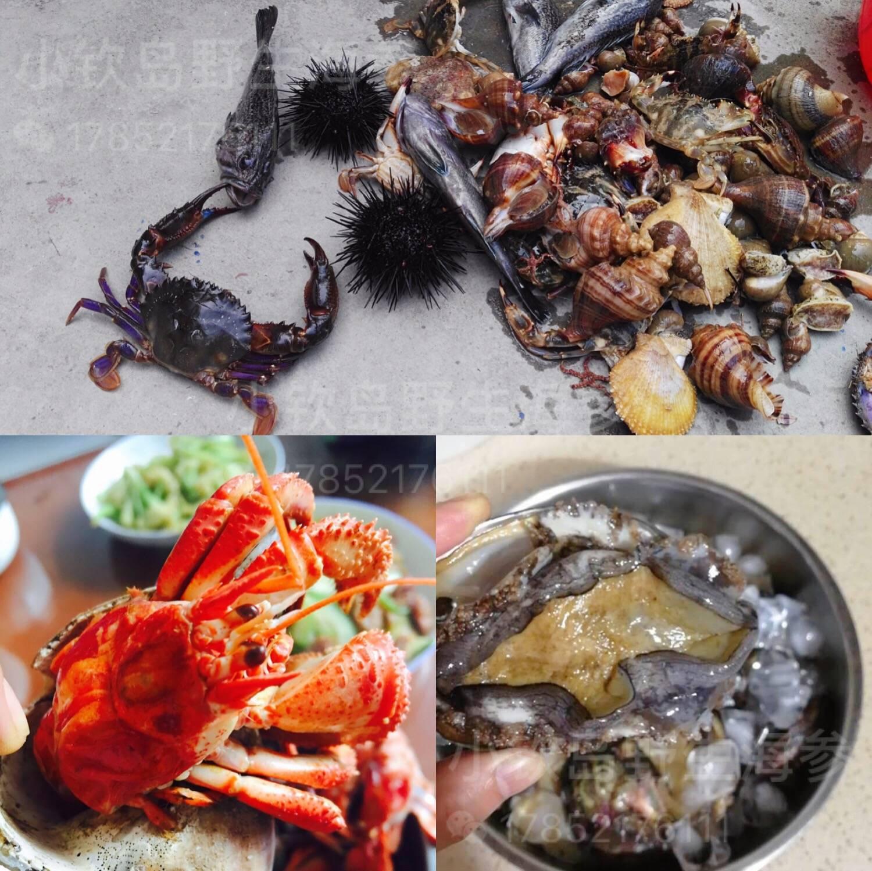 小钦岛海鲜