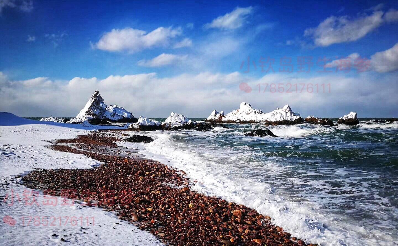 小钦岛雪景